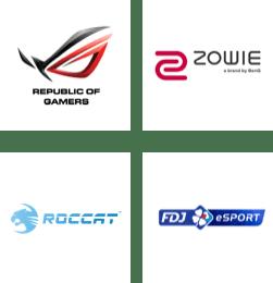 ROG - Republic of Gamers, ZOWIE, ROCCAT, FDJ eSport logos