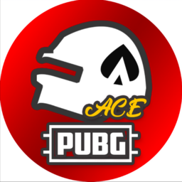 "ACE ""Streamer Challenge""-Squad"