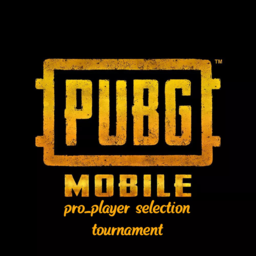 PUBGM PRO_PLAYERS SELECTION